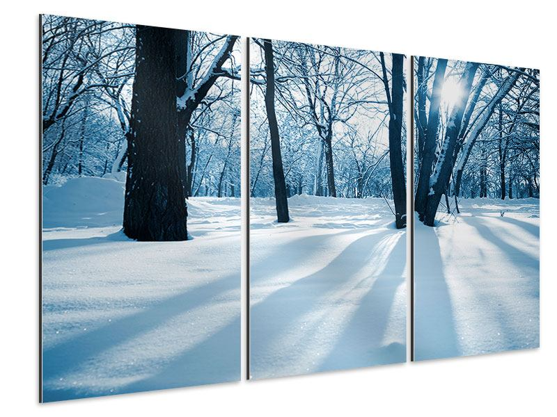 Aluminiumbild 3-teilig Der Wald ohne Spuren im Schnee