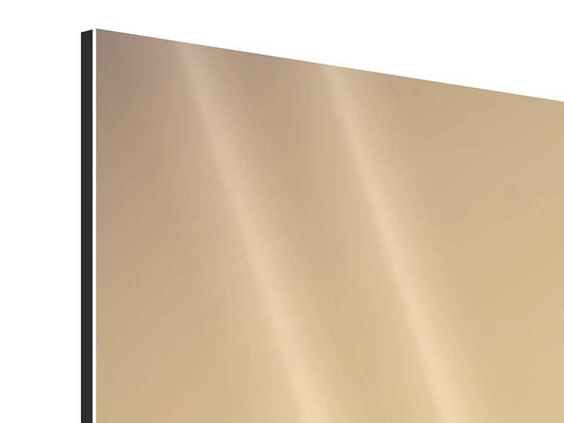 Aluminiumbild 3-teilig Weideland in Kenia