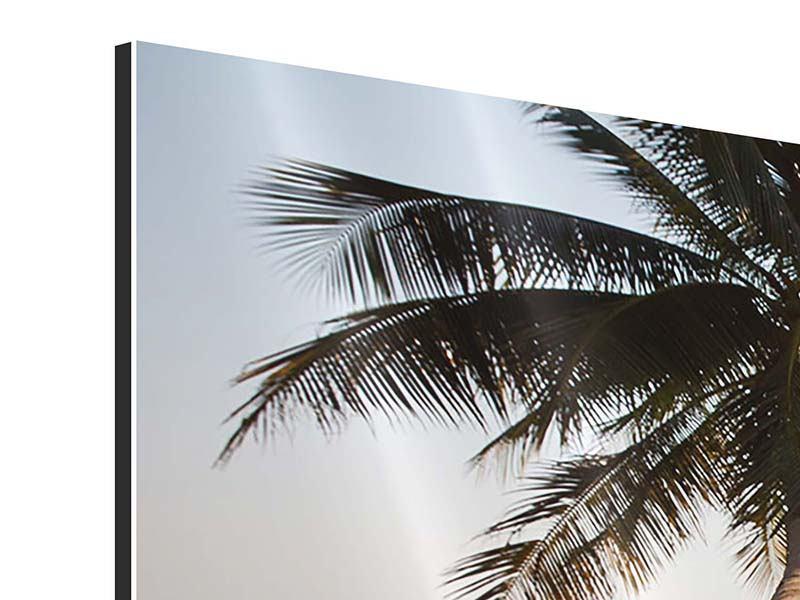 Aluminiumbild 3-teilig Palme