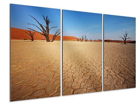 Aluminiumbild 3-teilig Wüste