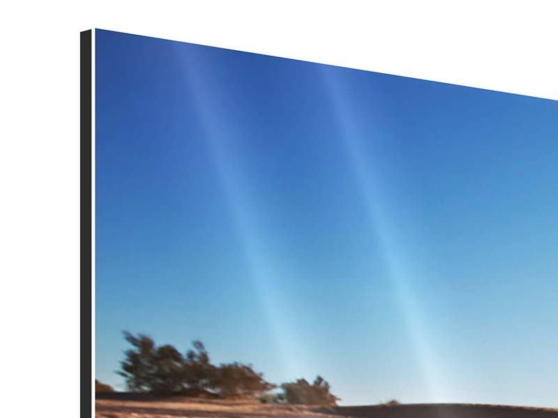 Aluminiumbild 3-teilig Dürre