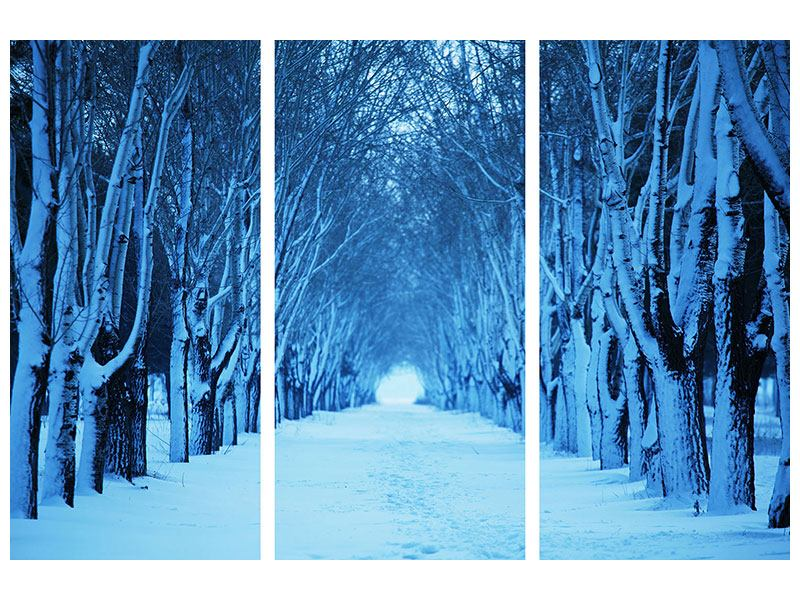 Aluminiumbild 3-teilig Winterbäume