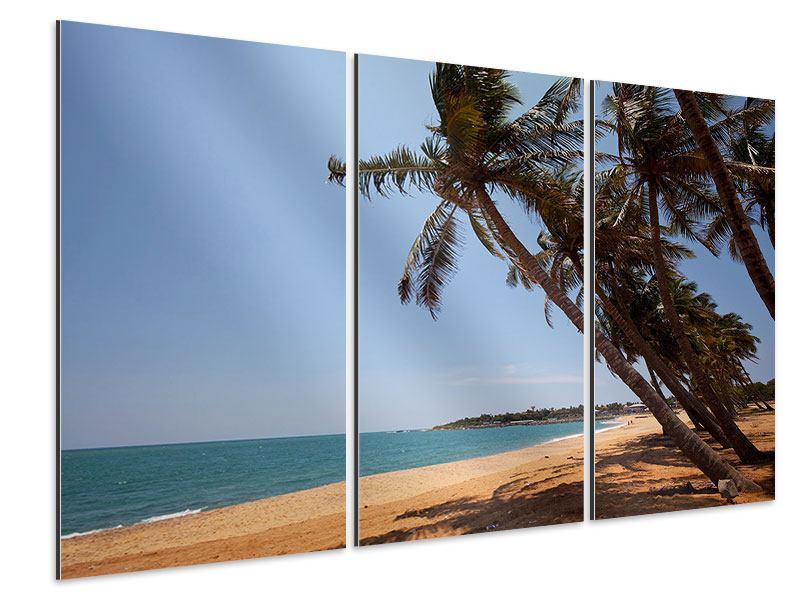 Aluminiumbild 3-teilig Palmblätter