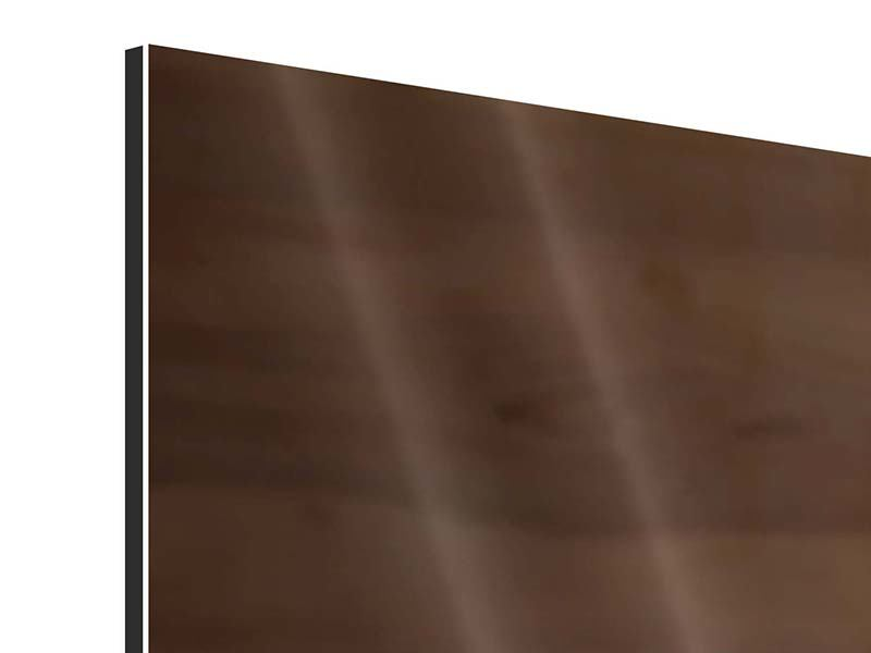 Aluminiumbild 3-teilig Speck
