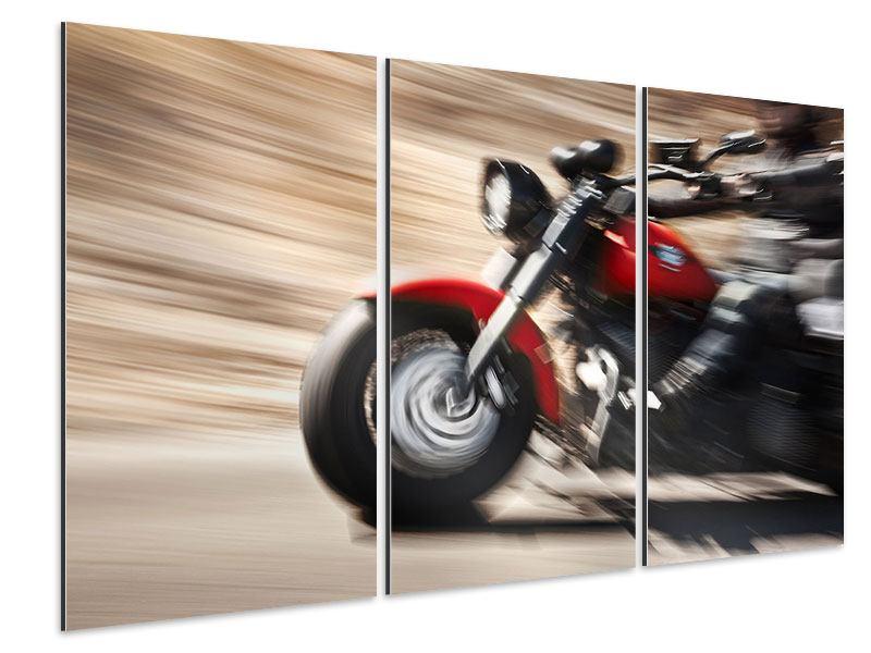 Aluminiumbild 3-teilig Biker
