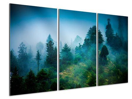 Aluminiumbild 3-teilig Geheimnisvoller Wald