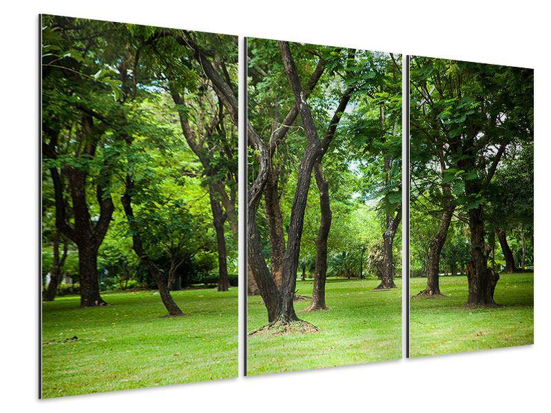 Aluminiumbild 3-teilig Kirschbaum-Garten