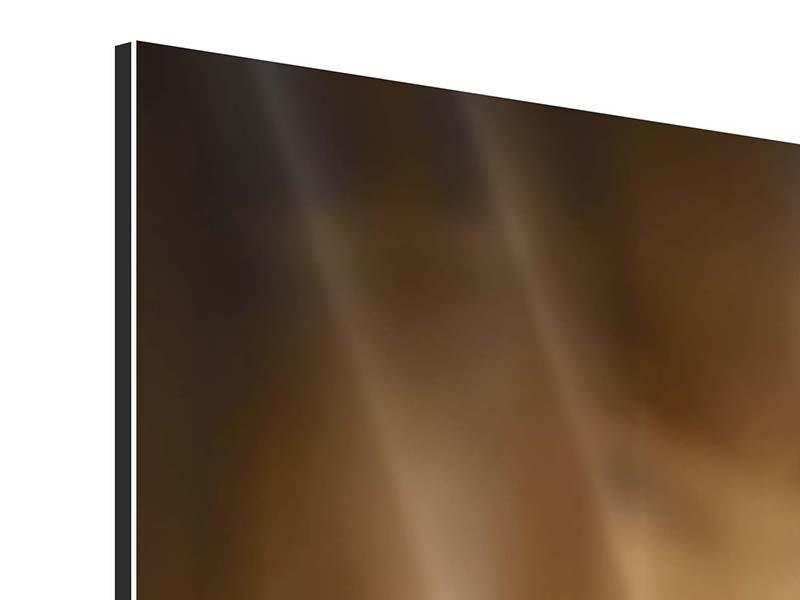 Aluminiumbild 3-teilig Wellness-Steine