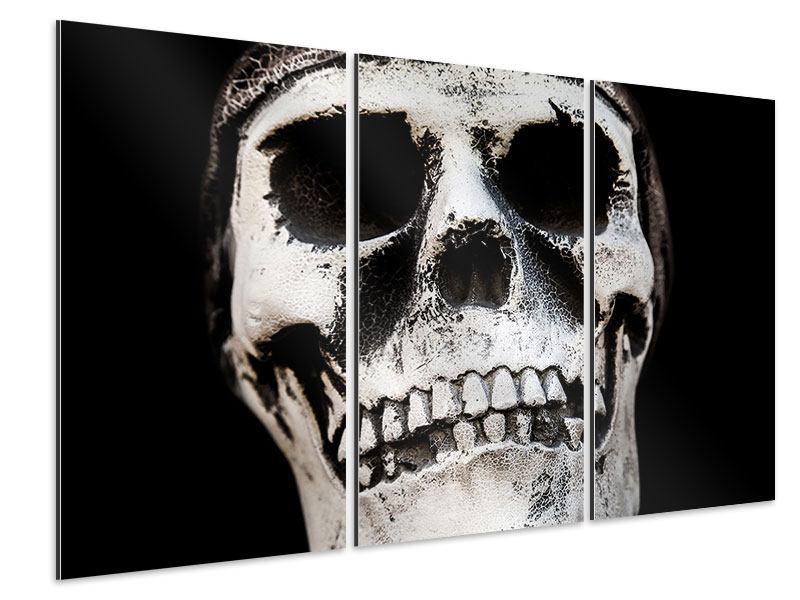 Aluminiumbild 3-teilig Skull