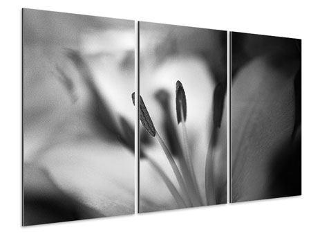 Aluminiumbild 3-teilig Makro Lilienblatt