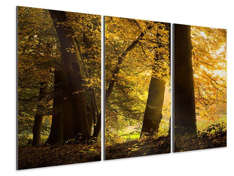 Aluminiumbild 3-teilig Herbstlaub