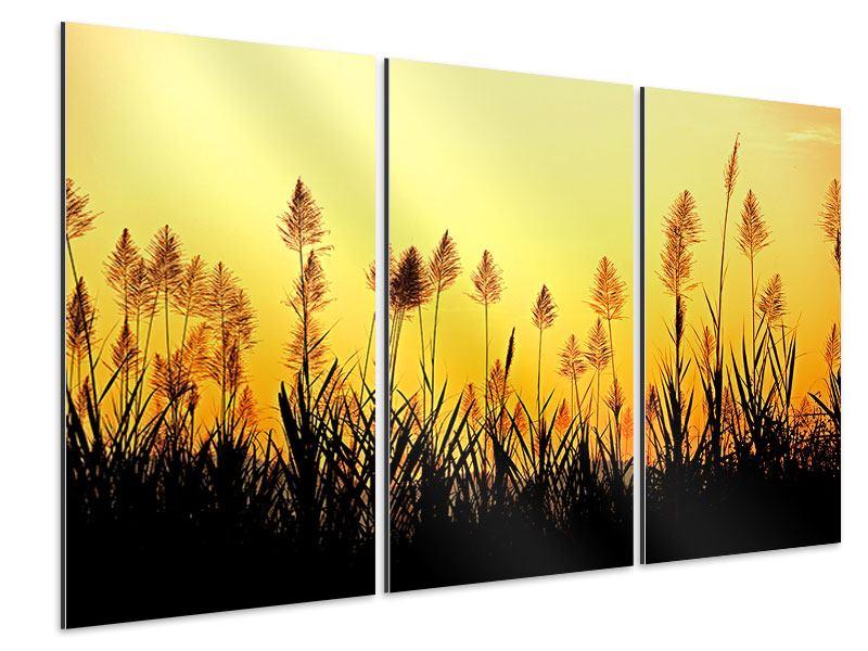 Aluminiumbild 3-teilig Die Blumen des Feldes