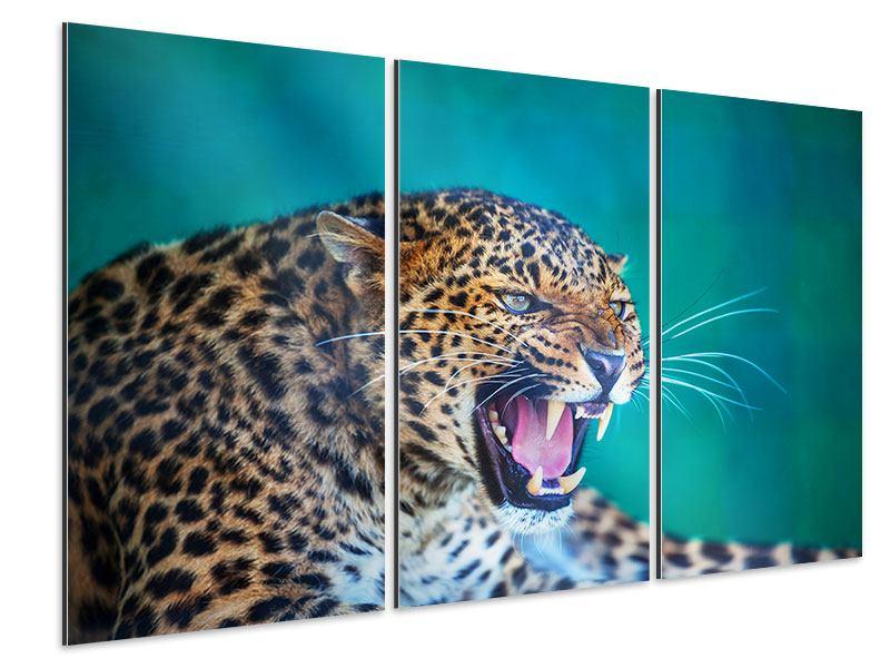 Aluminiumbild 3-teilig Achtung Leopard