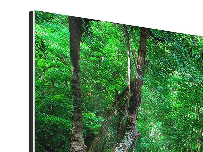 Aluminiumbild 3-teilig Am Fusse von Erawan