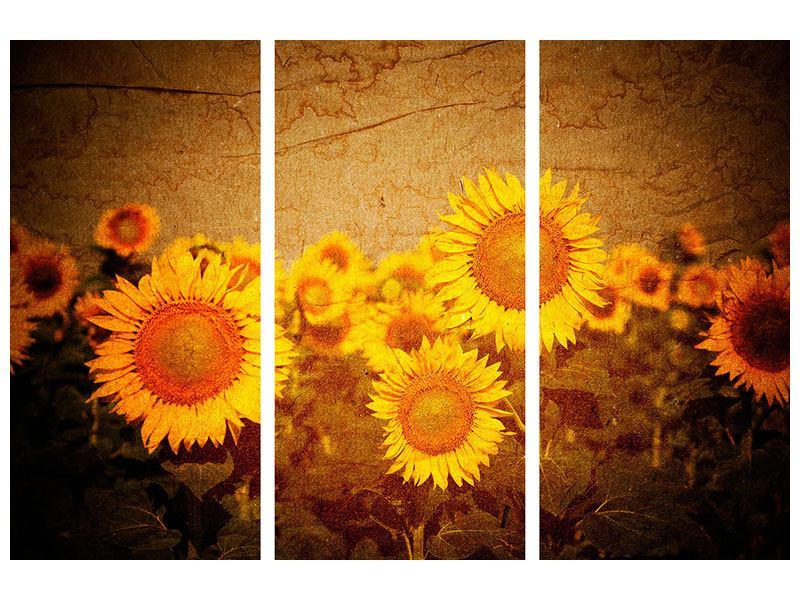 Aluminiumbild 3-teilig Retro-Sonnenblumen