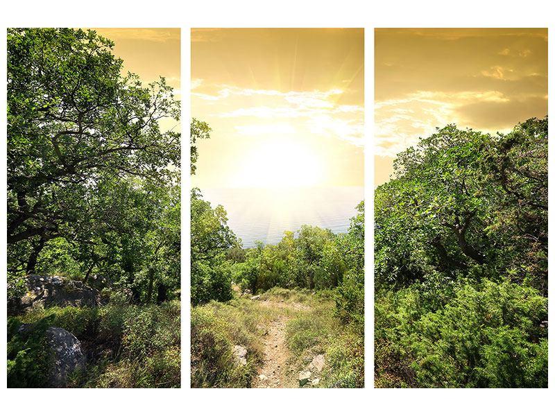 Aluminiumbild 3-teilig Am Ende des Waldes