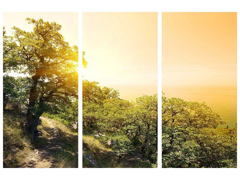 Aluminiumbild 3-teilig Sonnenuntergang in der Natur