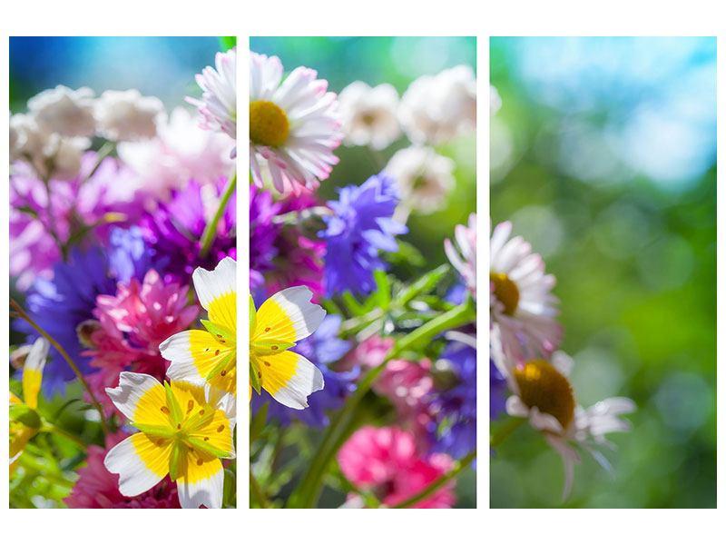 Aluminiumbild 3-teilig XXL Gartenblumen