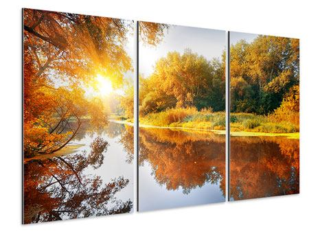 Aluminiumbild 3-teilig Waldspiegelung im Wasser