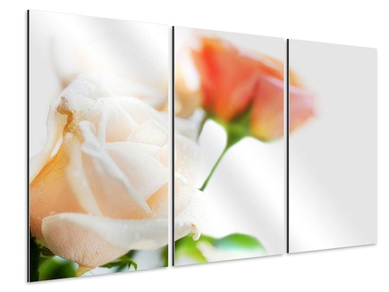 Aluminiumbild 3-teilig Rosenperspektive