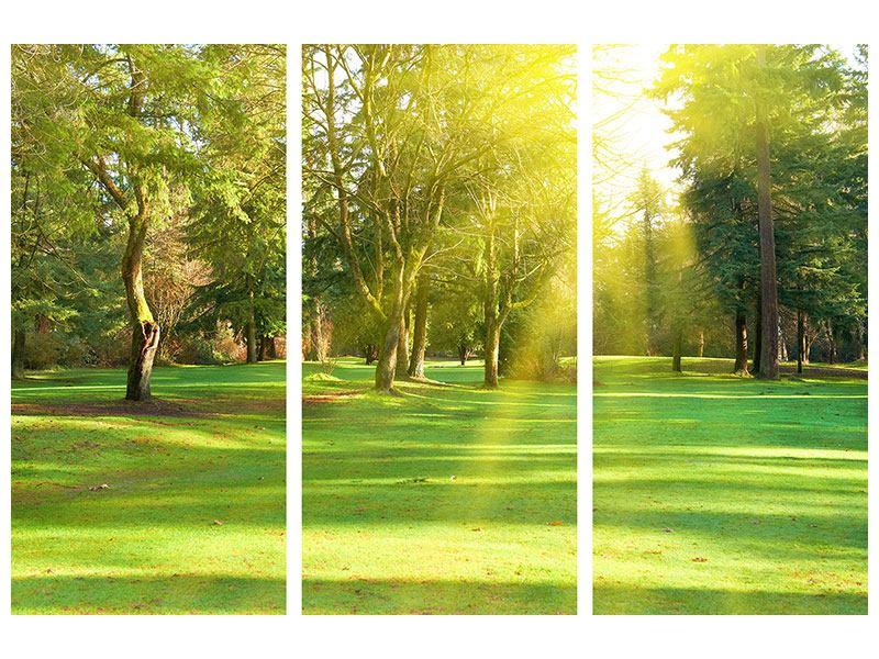 Aluminiumbild 3-teilig Im Park