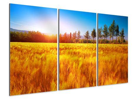 Aluminiumbild 3-teilig Der Herbst