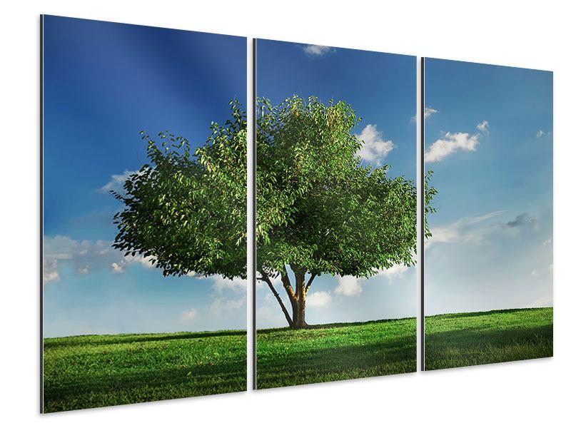 Aluminiumbild 3-teilig Baum im Grün