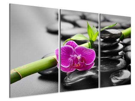 Aluminiumbild 3-teilig Feng-Shui-Orchidee