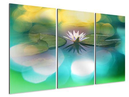 Aluminiumbild 3-teilig Lotus-Spiegelung