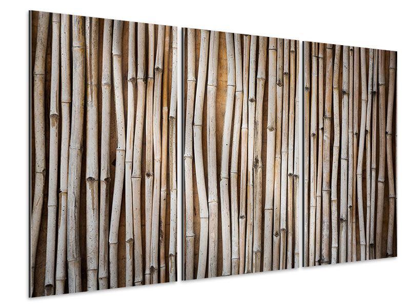 Aluminiumbild 3-teilig Getrocknete Bambusrohre