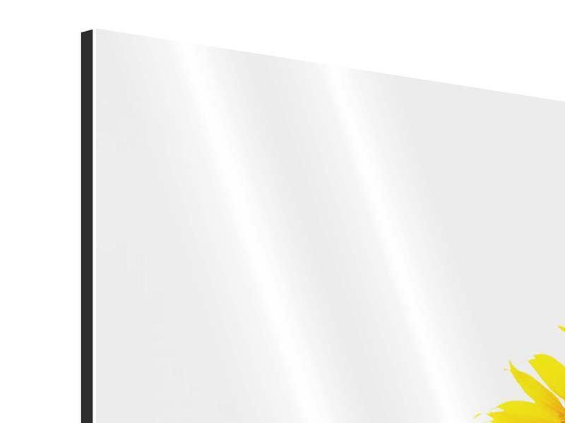 Aluminiumbild 3-teilig Das Sonnenblumenfeld