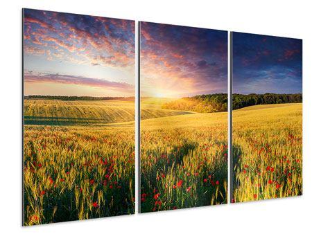 Aluminiumbild 3-teilig Ein Blumenfeld bei Sonnenaufgang