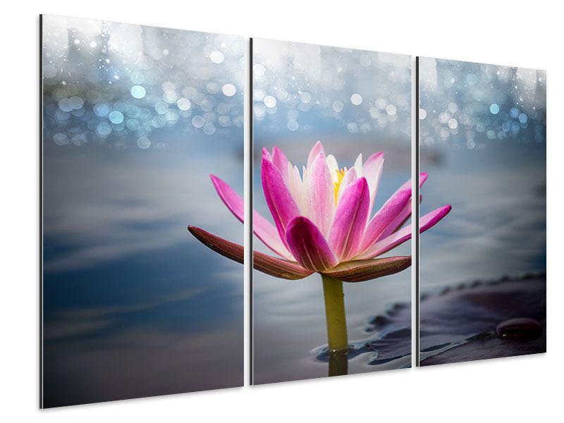 Aluminiumbild 3-teilig Lotus im Morgentau