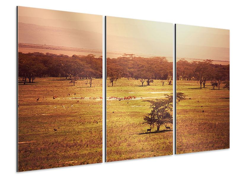 Aluminiumbild 3-teilig Malerisches Afrika