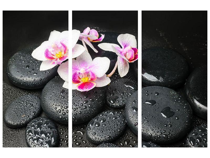 Aluminiumbild 3-teilig Feng-Shui-Orchidee Zen