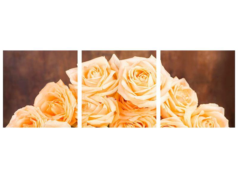 Panorama Aluminiumbild 3-teilig Die Rosenzeit