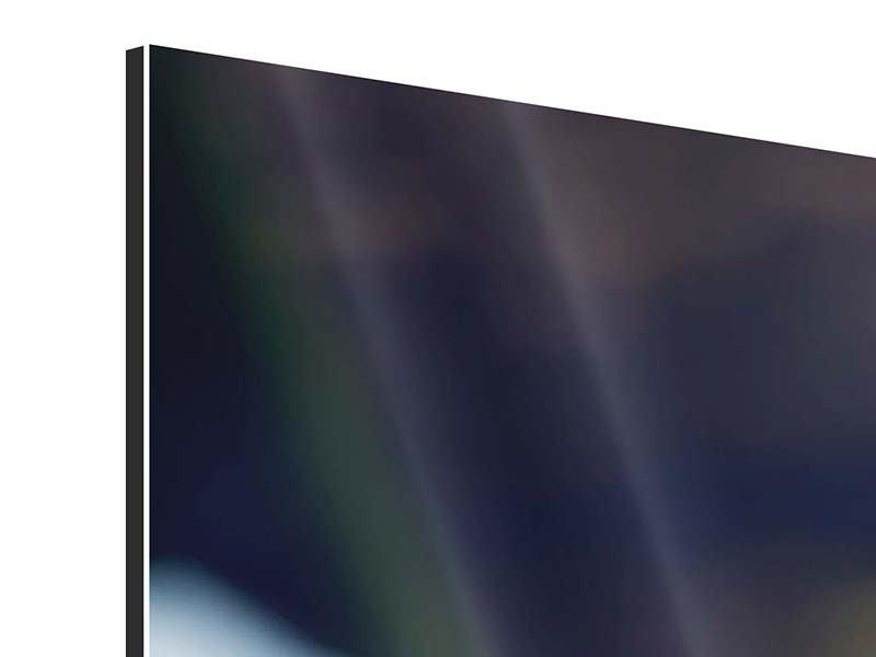 Panorama Aluminiumbild 3-teilig Schlange