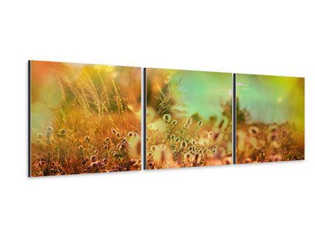 Panorama Aluminiumbild 3-teilig Blumenwiese in der Abenddämmerung