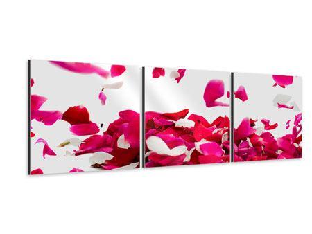 Panorama Aluminiumbild 3-teilig Für mich soll`s rote Rosen regnen