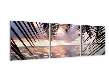 Panorama Aluminiumbild 3-teilig Unter Palmenblätter