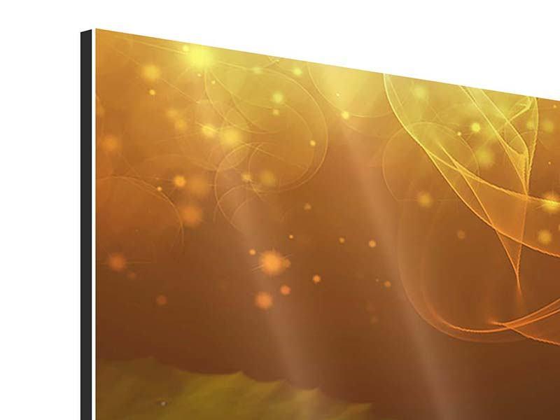 Panorama Aluminiumbild 3-teilig Der Frosch und das Seerosenblatt