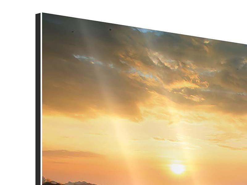 Panorama Aluminiumbild 3-teilig Sonnenblumenfeld im Abendrot