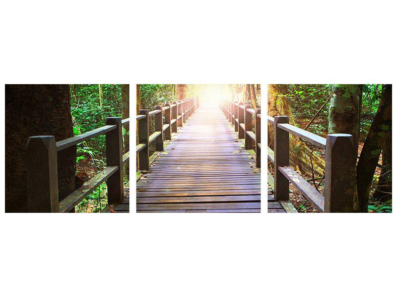 Panorama Aluminiumbild 3-teilig Die Brücke im Wald