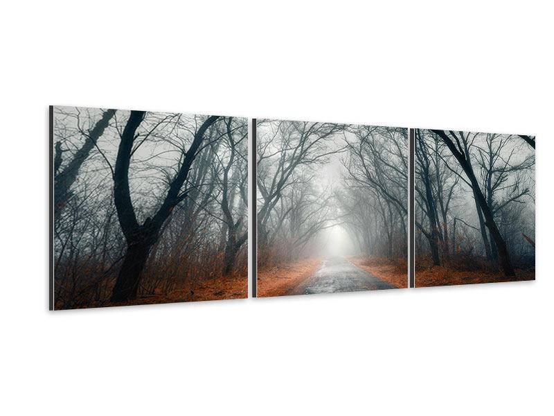 Panorama Aluminiumbild 3-teilig Mysteriöse Stimmung im Wald