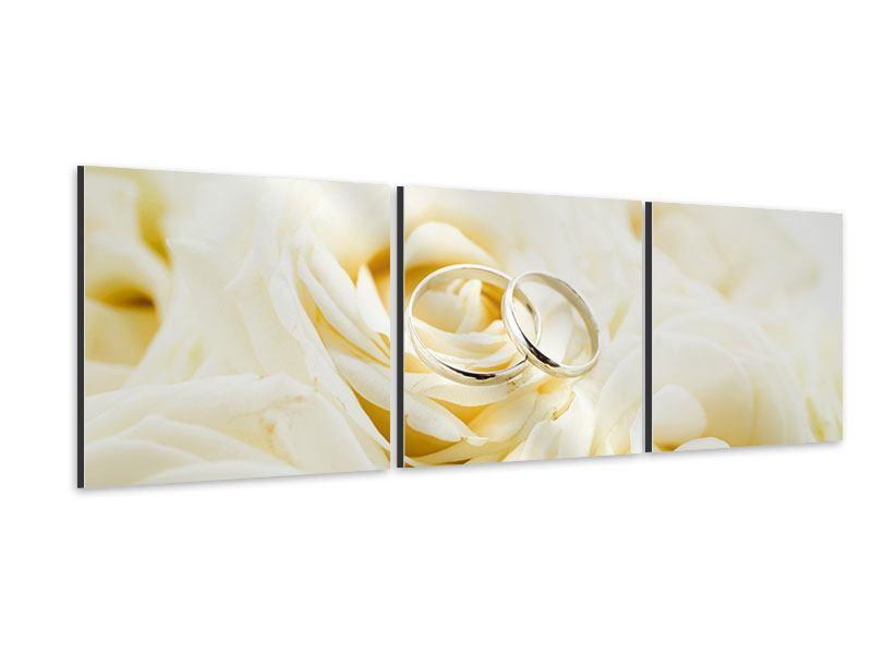 Panorama Aluminiumbild 3-teilig Trauringe auf Rosen gebettet
