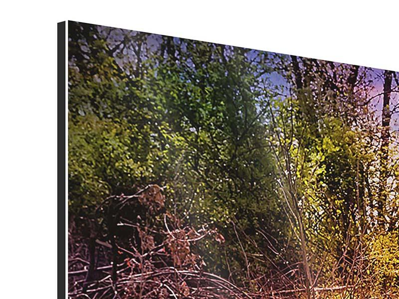 Panorama Aluminiumbild 3-teilig Der Waldpfad