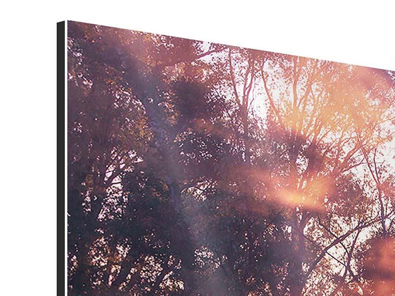 Panorama Aluminiumbild 3-teilig Die Waldspiegelung