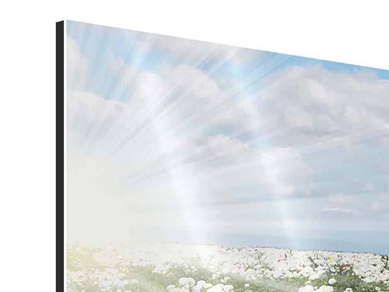 Panorama Aluminiumbild 3-teilig Die Frühlingsblumenwiese
