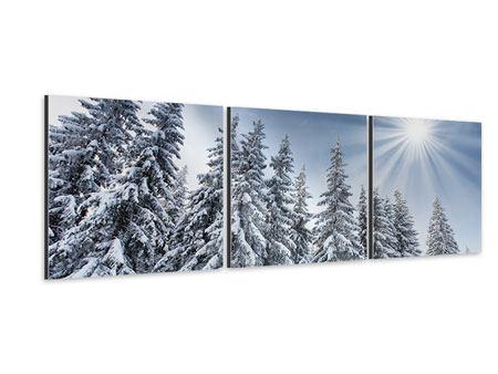 Panorama Aluminiumbild 3-teilig Wintertannen