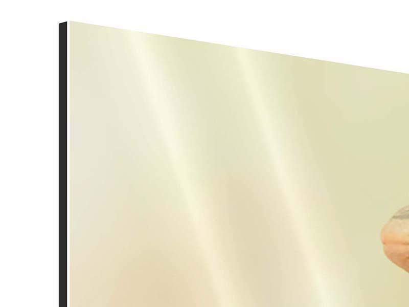 Panorama Aluminiumbild 3-teilig Eidechse